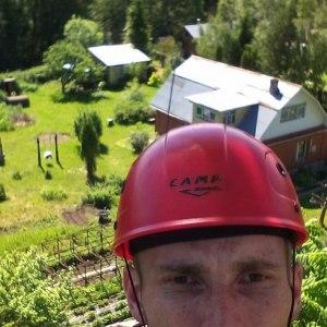 Кронирование дерева на даче