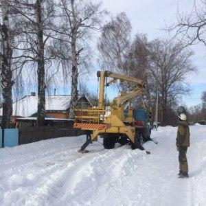 Кронирование деревьев на частной территории в Тульской области