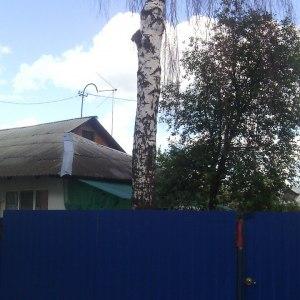 Опиливание деревьев в Туле