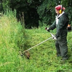 Расчистка территории от зарослей травы