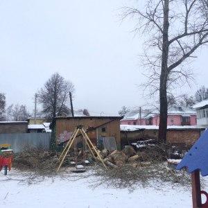 Результат сруба дерева у гаража