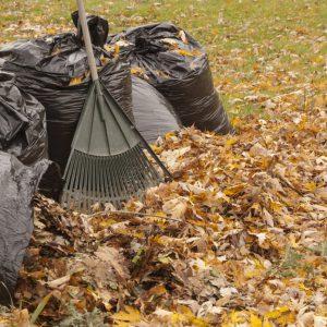 Уборка территории от опавшей листвы в Туле