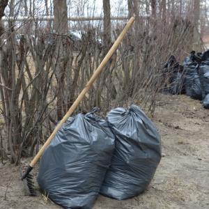 Расчистка территории от мусора