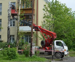 Обрезка деревьев вблизи жилого дома